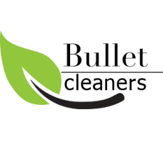 bullet-cleaners